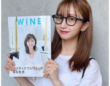 田原可南子は母・向井田彩子のメイクに似せてる!現在の顔画像と比較!